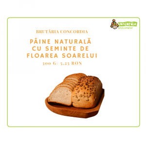 Copy-of-PANIFICATIE-03_PAINE-NAT-CU-SEMINTE-DE-FLOAREA-SOARELUI-1.png