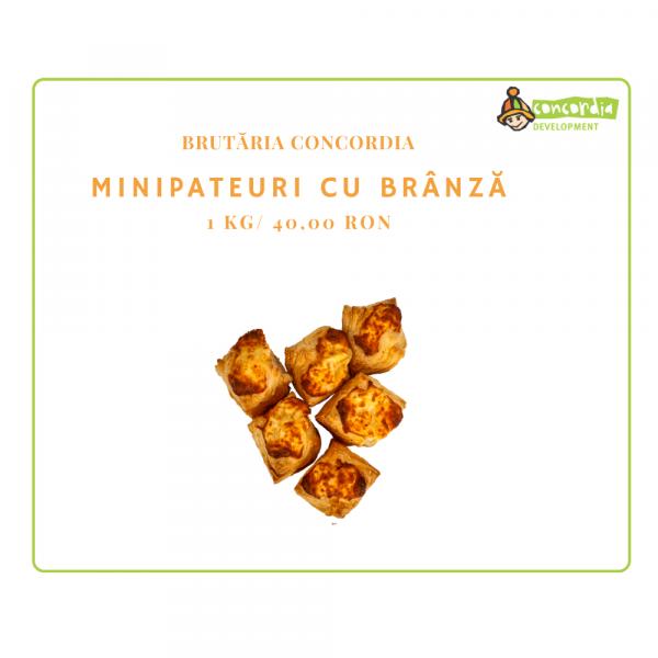 PATISERIE-20_MINIPATEURI-CU-BRANZA-1-2