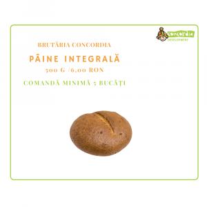 Copy-of-PANIFICATIE-10_PAINE-INTEGRALA.png