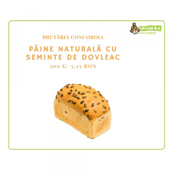 PANIFICATIE-05_PAINE-NAT-CU-SEMINTE-DE-DOVLEAC-2-1.png